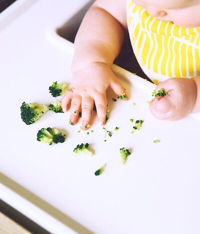 broccoli as a first food for blw