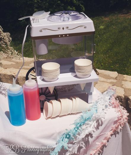 gender reveal food ideas -  snow cone station