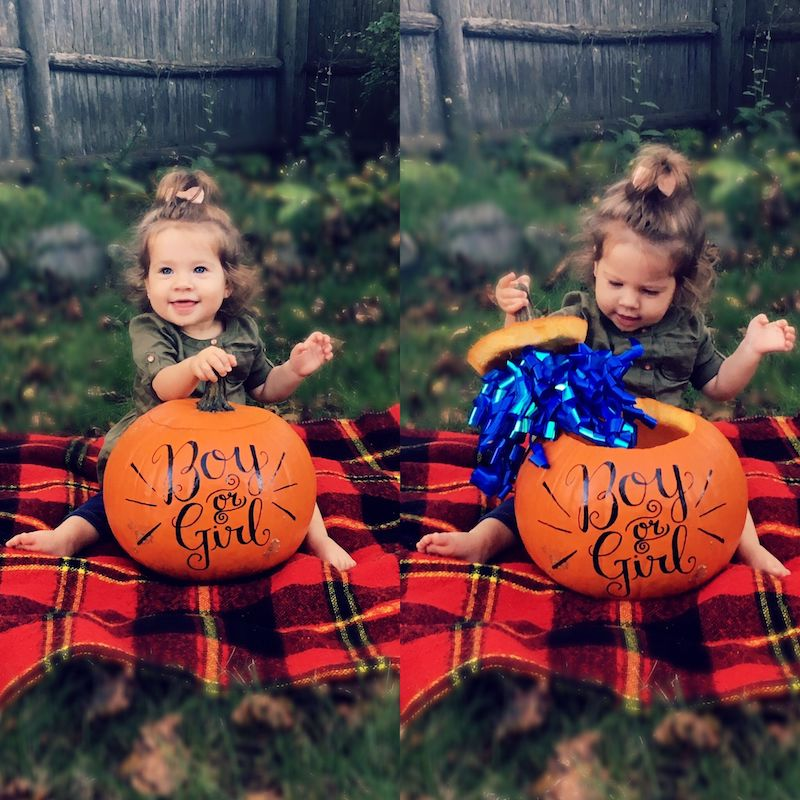 pumpkin in a ribbon to reveal baby's gender