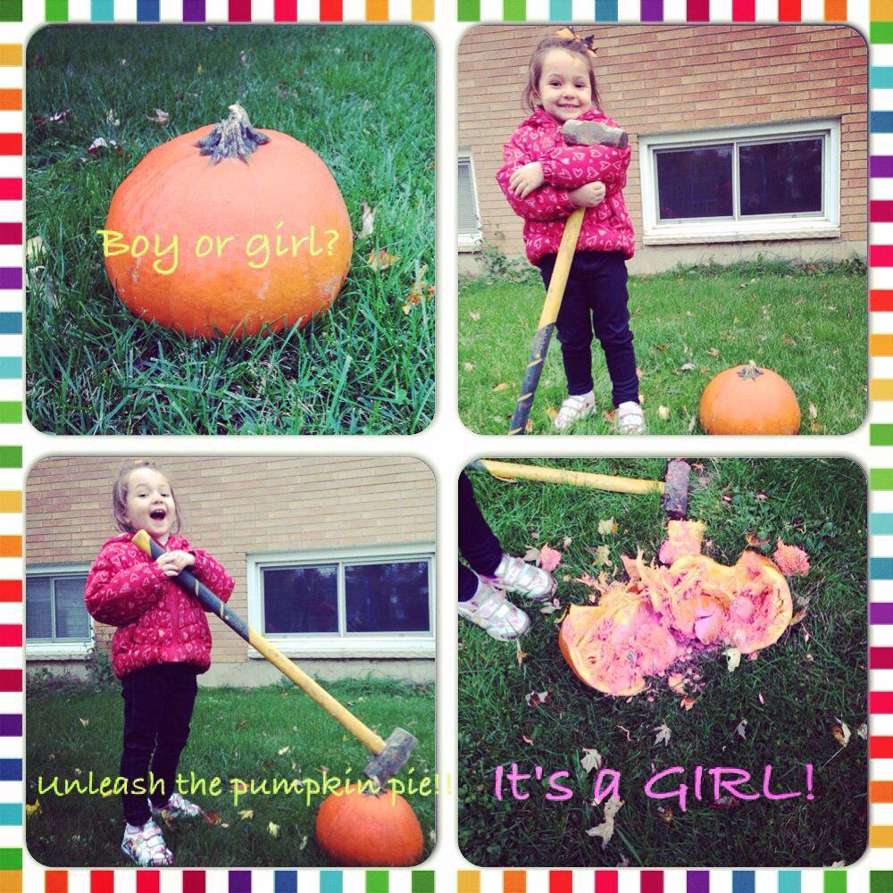 pumpkin smash gender reval