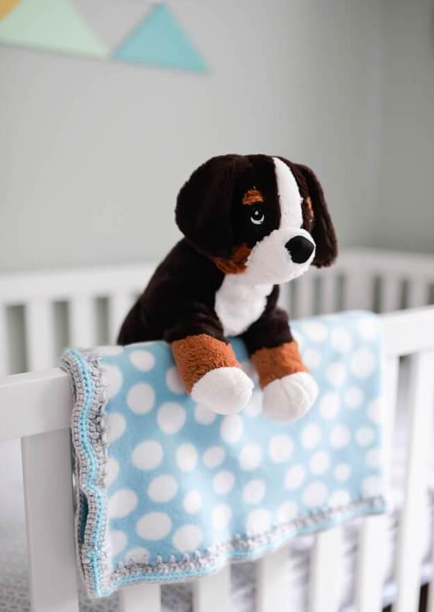 stuffed doggie in adventure themed nursery