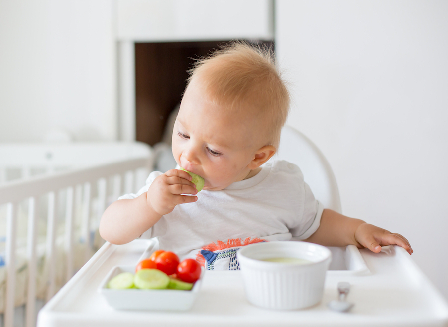 baby led weaning in high chair
