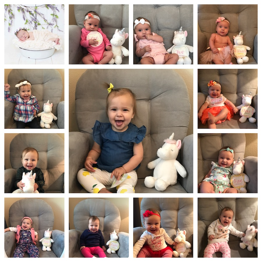 collage of monthly baby pictures with baby in chair holding unicorn stuffed animal