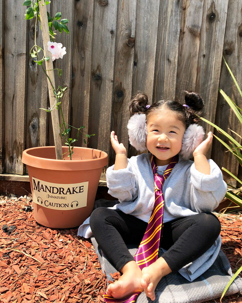 Big sister wearing earmuffs sitting next to Harry Potter mandrake