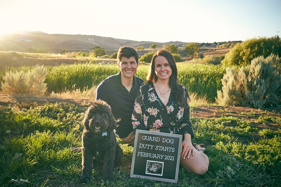 guard dog pregnancy announcement with letterboard sign