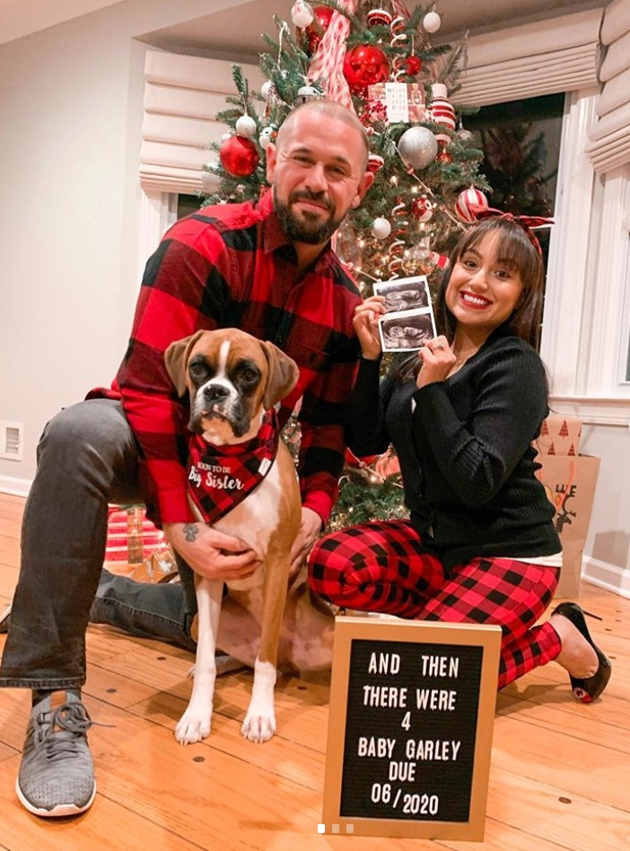Christmas themed dog pregnancy announcement