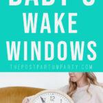 wake window pin image