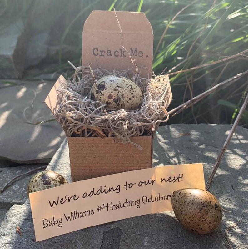 pregnancy announcement egg