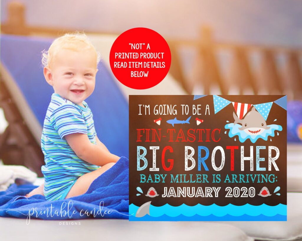 beach pregnancy announcement  with little boy and shark sign